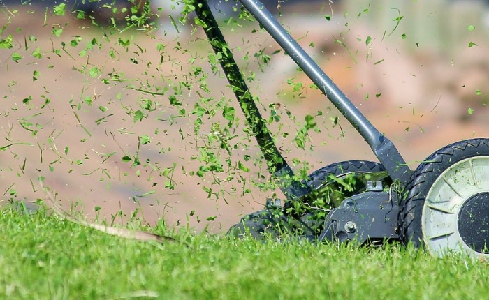 Mow the backyard: A parable about priorities