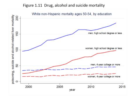 Drug, suicid, alcohol deaths